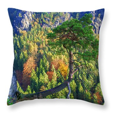 Lonely Tree In The Elbe Sandstone Mountains Throw Pillow