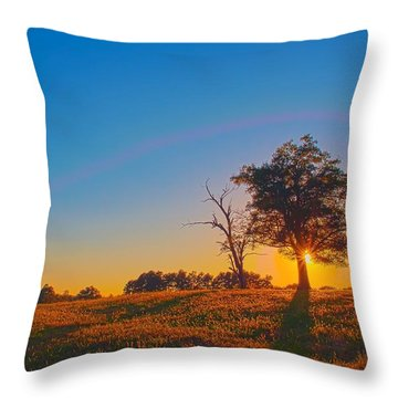 Throw Pillow featuring the photograph Lonely Tree On Farmland At Sunset by Alex Grichenko