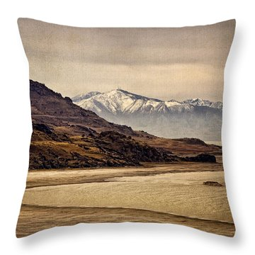 Throw Pillow featuring the photograph Lonesome Land by Priscilla Burgers