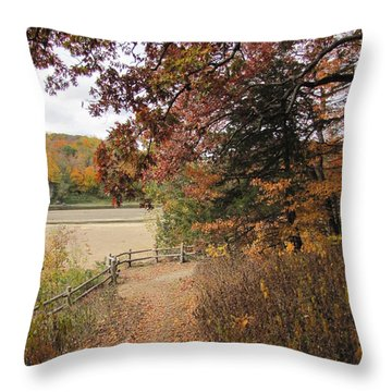 Lonesome Path Throw Pillow by Minding My  Visions by Adri and Ray