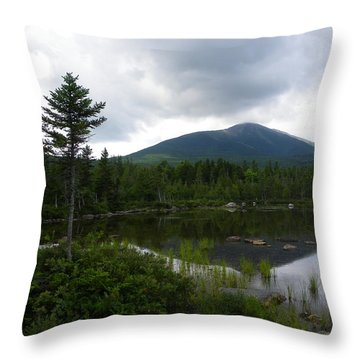 Lonesome Pine At Sandy Stream Pond Throw Pillow