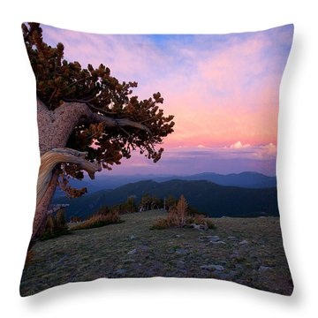 Lonesome Pine Throw Pillow by Jim Garrison