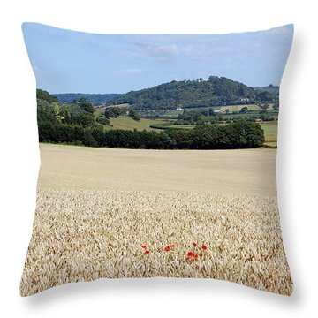 Lonesome Poppies Throw Pillow