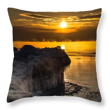 Long Cold Winter Throw Pillow by James  Meyer