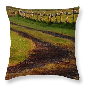 Long Dirt Road Throw Pillow