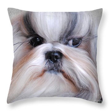Long Haired Shih Tzu Throw Pillow