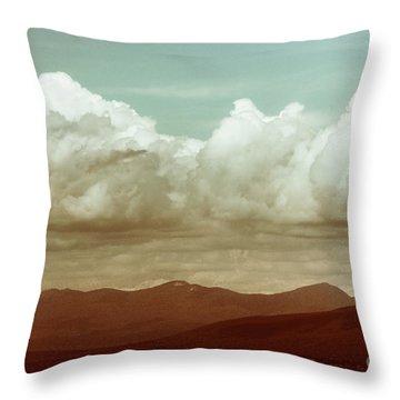 Throw Pillow featuring the photograph Long Horizon by Dana DiPasquale
