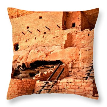 Long House Ladders Throw Pillow