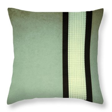 Long Narrow Window Throw Pillow