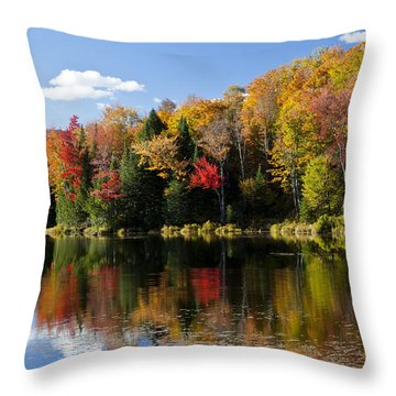 Long Pond Autumn Throw Pillow