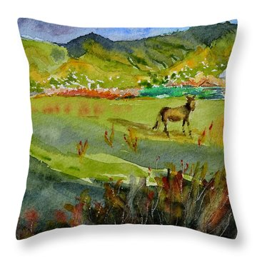 Long Shadow Storm Throw Pillow