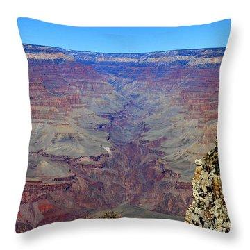 Long View  Canyon Throw Pillow