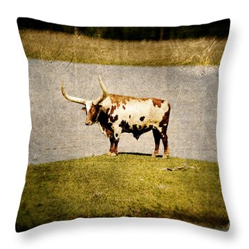 Longhorn Throw Pillow by Scott Pellegrin