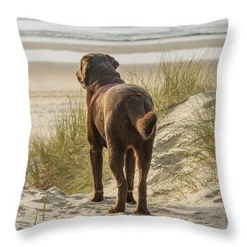 Longing Throw Pillow by Jean Noren