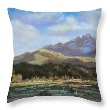 Long's Light Throw Pillow by Heather Coen
