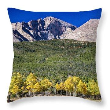 Longs Peak A Colorado Playground Throw Pillow