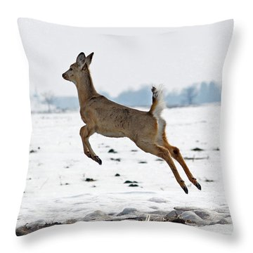 Look I Am Flying Throw Pillow by Lori Tordsen