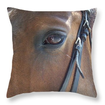 Look In My Eye Throw Pillow