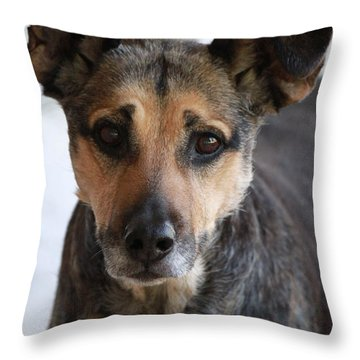 Look In To Her Big Brown Eyes Throw Pillow
