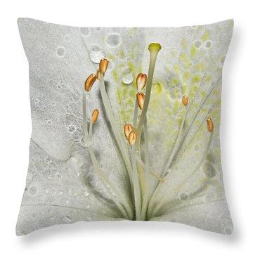 Look Inside A White Azalea Throw Pillow by Tammy Schneider