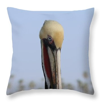 Look Into My Eye  Throw Pillow by Christy Pooschke