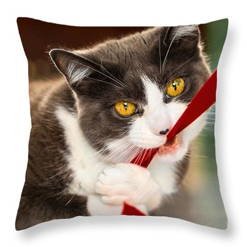 Look Into My Eyes Throw Pillow by Carsten Reisinger