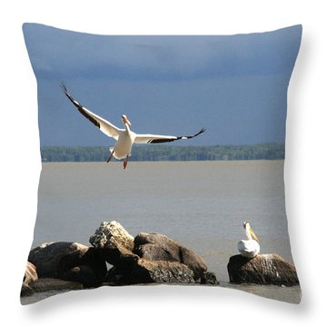 Look Ma - I Can Fly Throw Pillow by Mary Mikawoz