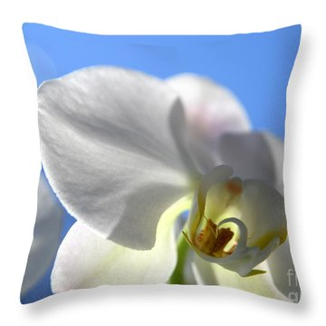 Look To The Sky  Throw Pillow by Neal Eslinger