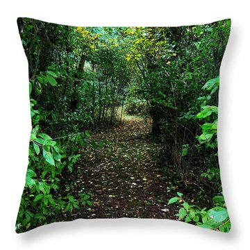 Throw Pillow featuring the photograph Look Within by Lin Haring