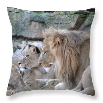 Throw Pillow featuring the photograph Lookee Lions by Amanda Eberly-Kudamik