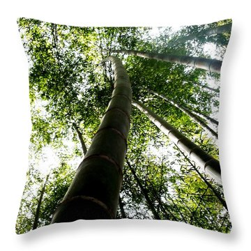 Lookin' Up, La.  Throw Pillow