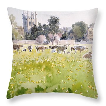 Looking Across Christ Church Meadows Throw Pillow by Lucy Willis