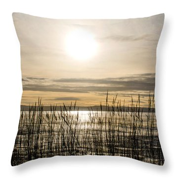 Looking At Wales Through The Grass Throw Pillow