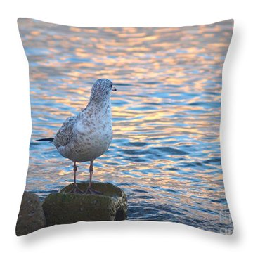 Looking Back Throw Pillow by Susan  Dimitrakopoulos