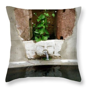 Looking Deeper Throw Pillow by Lainie Wrightson