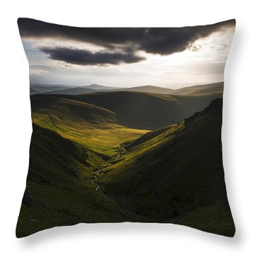 Looking Down Henhole Throw Pillow