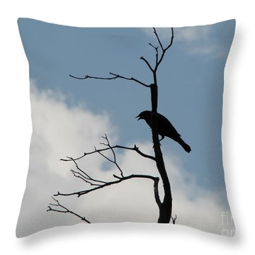 Throw Pillow featuring the photograph Looking Down On Me  by Michael Krek