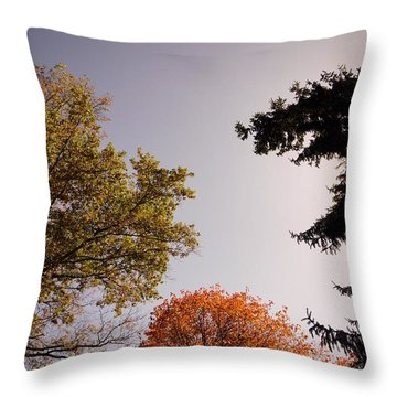 Throw Pillow featuring the photograph Looking Down On Us by Photographic Arts And Design Studio