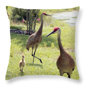 Looking For A Handout Throw Pillow