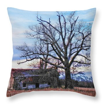 Looking For Shade Throw Pillow by Victor Montgomery