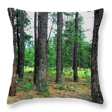 Throw Pillow featuring the photograph Looking For The Forest by Lin Haring