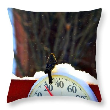 Throw Pillow featuring the photograph Looking Forward To Warmer Days by Zafer Gurel
