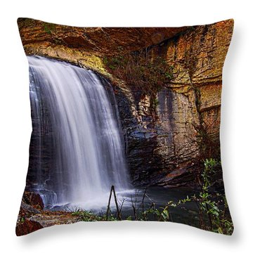 Throw Pillow featuring the photograph Looking Glass Falls Brevard Nc by Bob Pardue