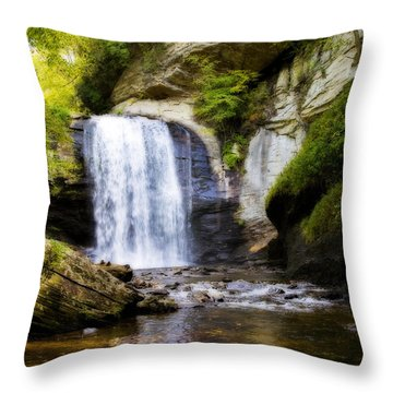 Looking Glass Throw Pillow by Steven Richardson