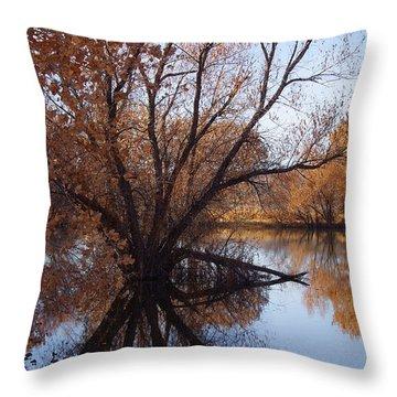 Looking Glass Throw Pillow by Vicki Pelham