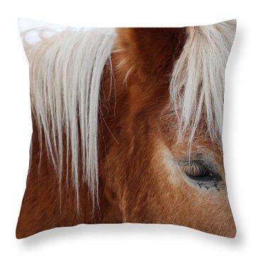 Looking Good  Throw Pillow