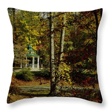 Throw Pillow featuring the photograph Looking Into Fall by James C Thomas