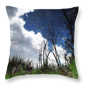 Looking Into The Bog Throw Pillow by Joy Nichols