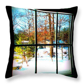 Looking Out Throw Pillow by Pamela Hyde Wilson