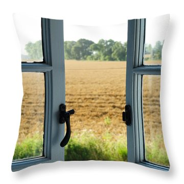 Looking Through A Window Throw Pillow by Chevy Fleet